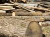 Sawmill,  Lembach_Yvon Meyer